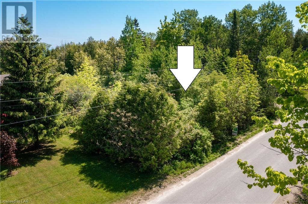 Lt 21 Woodland Park Road, The Blue Mountains, Ontario  N0H 1J0 - Photo 13 - 40088136